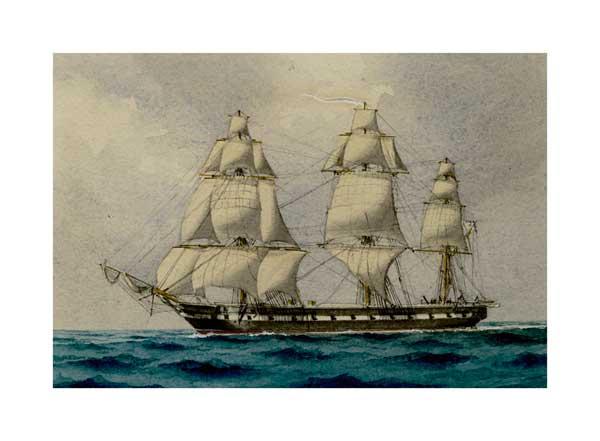 Victorian Warship 04 - McKENZIE, W Thompson