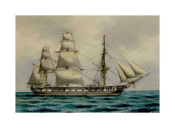 Victorian Warship 05 - McKENZIE, W Thompson