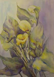 Calla Lilies I - MILLER, Rosemary