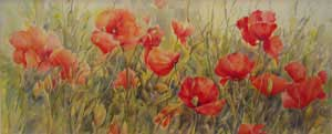 Poppy Delight - MILLER, Rosemary