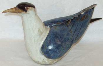 Tern - PHILLIPSON, John