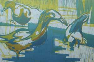 Ducks - STOKES, Vera